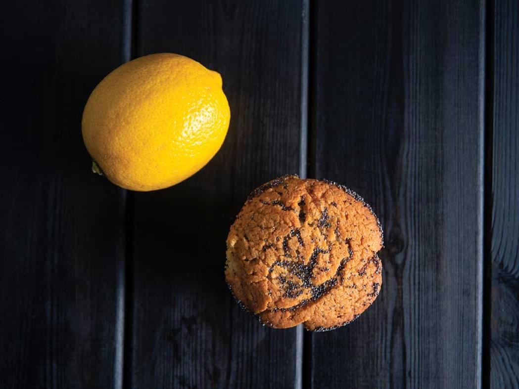 Lemon poppy seeds muffin